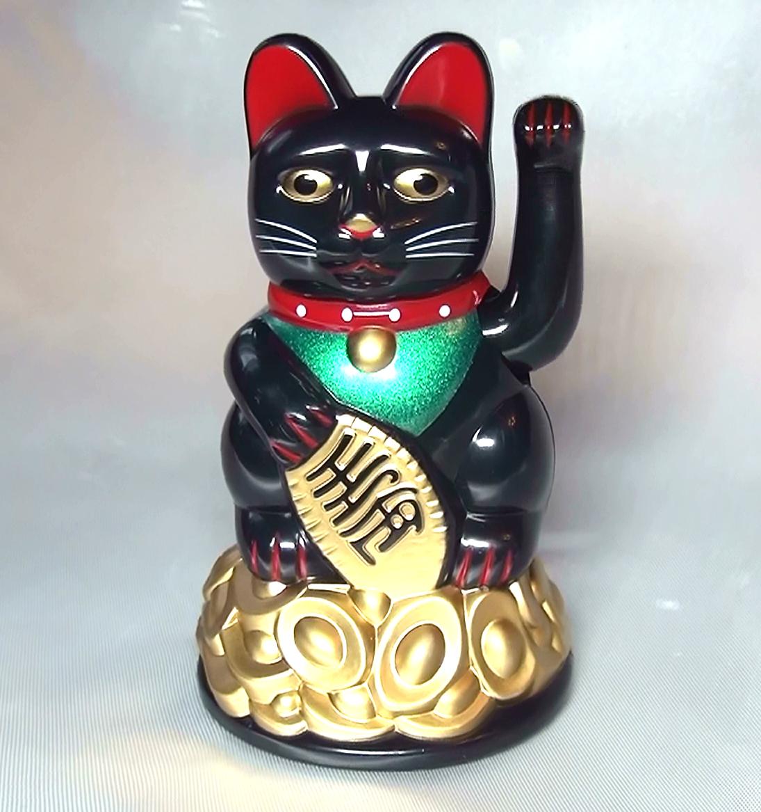 Кот купить фен